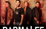 Image for PARMALEE 18+
