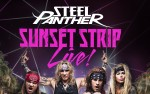 Image for Steel Panther - Sunset Strip Live