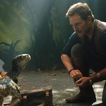 Image for Jurassic World: Das gefallene Königreich - FSK-Angabe folgt