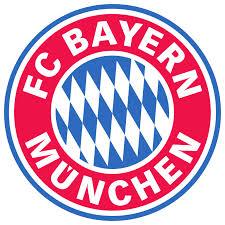 Image for 1. FC Schweinfurt 05 - FC Bayern München II